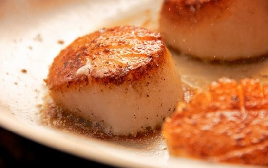 how-to-cook-scallops-084