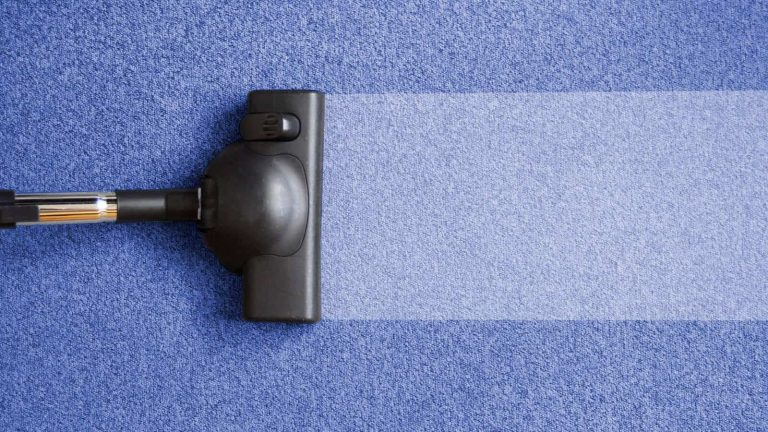 need for an carpet cleaner
