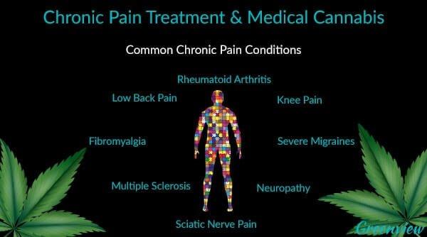 healing properties of cannabis