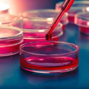 5 Must Know Facts About Stem Cell Technology