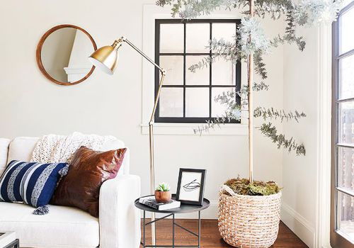 plant living room decor