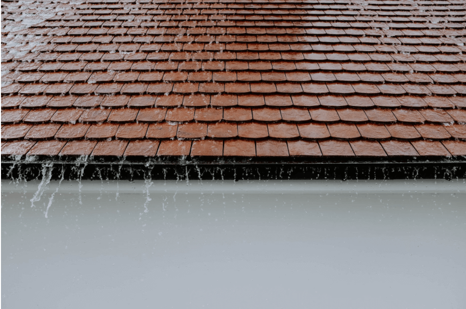 You Found Out That Your Roof Is Leaking? Here's Some Useful Advice